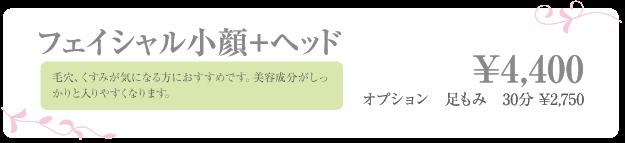 price_zu_03
